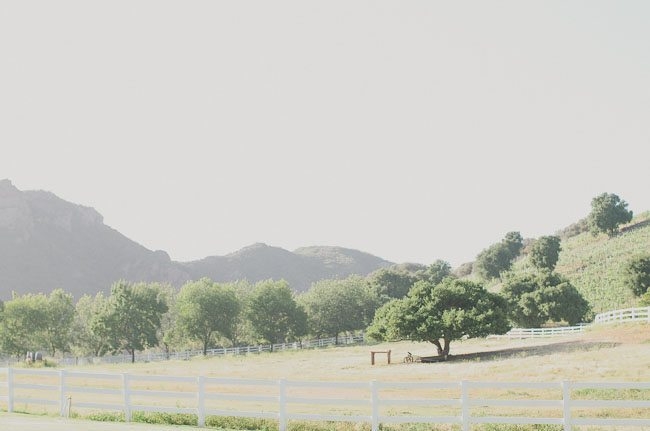 Saddlerock-Ranch-wedding-2