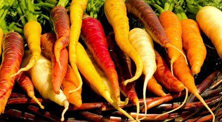 slides-carrots