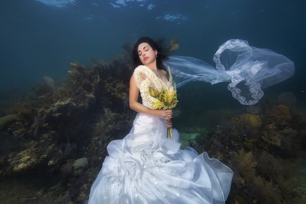 Best wedding photos under water wedding photos wedding photographer california beauitufl wedding dress - 12