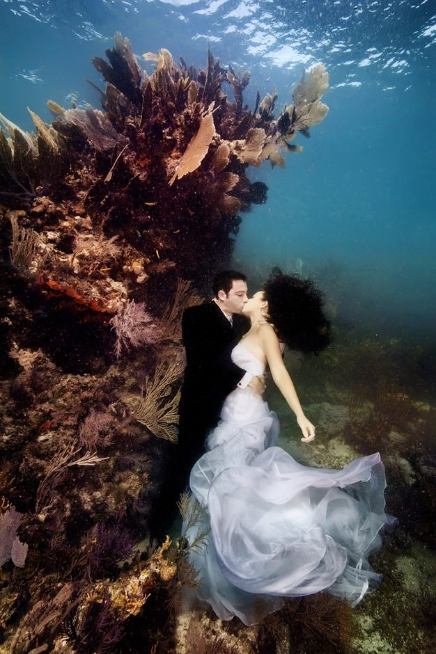 Best wedding photos under water wedding photos wedding photographer california beauitufl wedding dress - 13