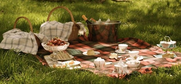 Picnic ideas how to have a picnic organic catering wedding ideas engagment photos cheap date green ideas - 7