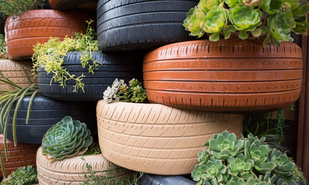 living-wall-lot-8-laura-christin-eco-caters catering san diego wedding catering